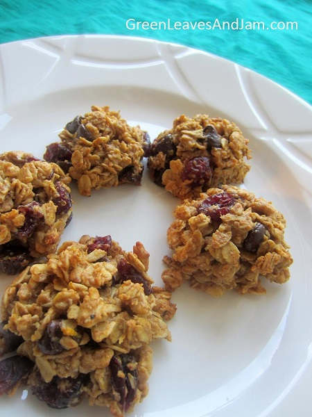 Chocolate and Cranberry Granola Cookies (1)