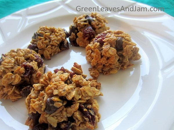 Chocolate and Cranberry Granola Cookies (4)