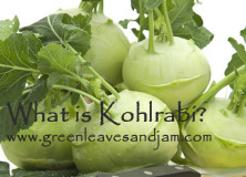 What is Kohlrabi?